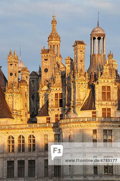 Dach mit Kaminen  Schloss Chambord  Chambord  Department Loir-et-Cher  Region Centre  Frankreich  Europa