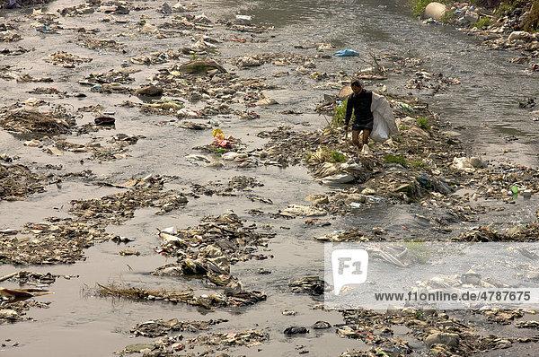 Mann sammelt Müll im heiligen Fluss Bagmati  Kathmandu  Nepal  Asien