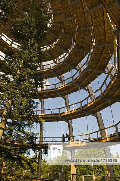Baumturm  44 Meter hoch  am längsten Baumwipfelpfad der Welt  spiralförmig  barrierefrei  Neuschönau  Nationalpark Bayerischer Wald  Bayern  Deutschland  Europa