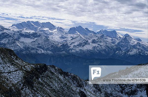 Berge am Thunersee  Berner Oberland  Schweiz  Europa