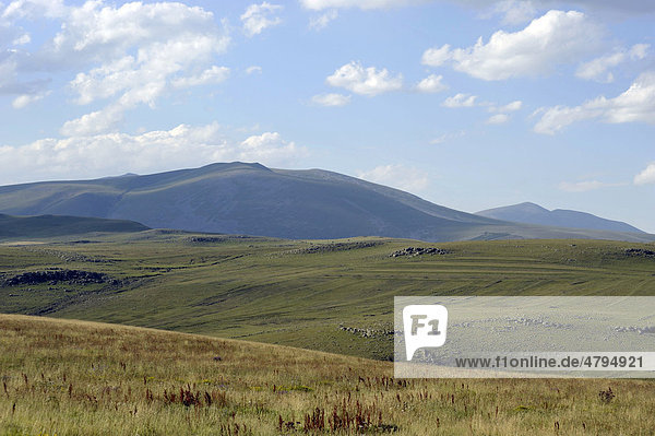 Landscape of the plateau  Way of St. Nino  Ninotsminda  Lesser Caucasus  Georgia  Western Asia