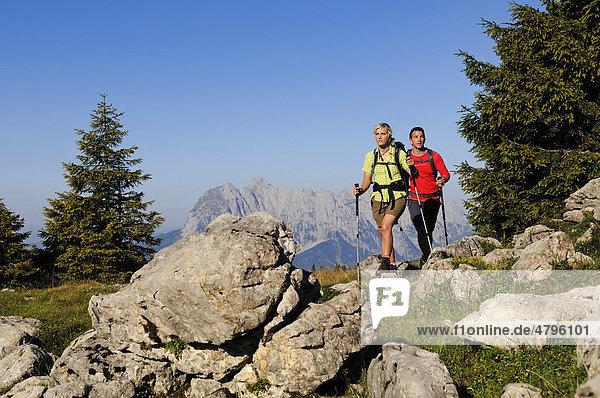 Hikers on the Eggenalm mountain pasture near the Straubinger Haus alpine lodge  in the back Mt. Wilder Kaiser  Reit im Winkl  Chiemgau  Upper Bavaria  Bavaria  Germany  Tyrol  Austria  Europe