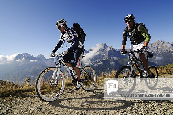 Mountain bikers on the Carnian trail  Mt. Helm  Alta Pusteria  South Tyrol  Dolomites  Italy  Europe