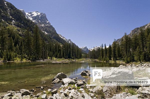 Fluss Cascade Creek  Cascade Canyon  Grand Teton Nationalpark  Wyoming  USA  Nordamerika