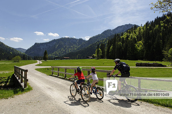 Mountain biker  cyclist at the Roethelmoosalm near Ruhpolding  Chiemgau  Upper Bavaria  Bavaria  Germany  Europe