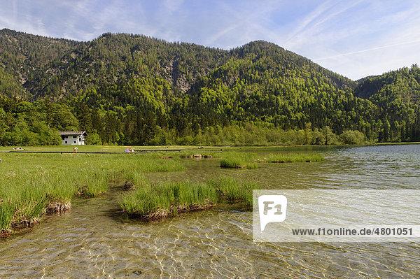 Weitsee lake near Ruhpolding  with Seefischerkaser fishing hut  Chiemgau  Upper Bavaria  Bavaria  Germany  Europe