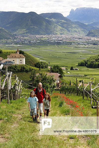 Vater und Kinder wandern in den Weinbergen von Missian bei Eppan an der Weinstraße  Überetsch  Bozener Unterland  Südtirol  Italien  Europa