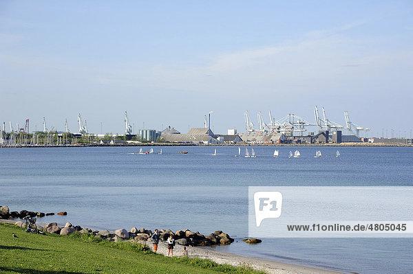 Speichergebäude und Kräne  Segelregatta  Hafen am Kattegat  _rhus  Jütland  Dänemark  Europa