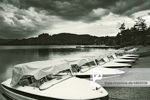 Boote am Titisee  Titisee-Neustadt  Schwarzwald  Baden-Württemberg  Deutschland  Europa