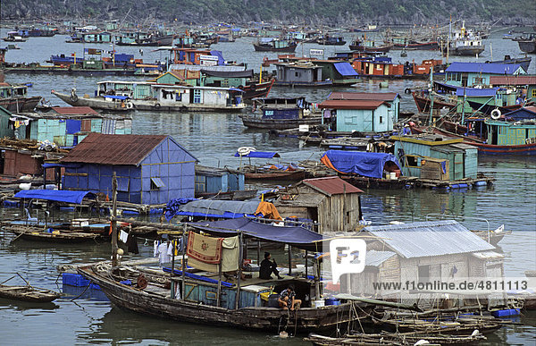 Floating village  Cat Ba Harbour  Halong Bay  Vietnam  Southeast Asia
