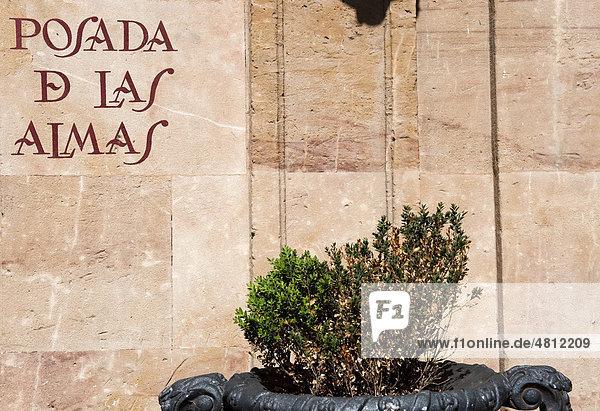 Schriftzug der Bar Posada de las Almas  Salamanca  Altkastilien  Castilla-LeÛn  Spanien  Europa