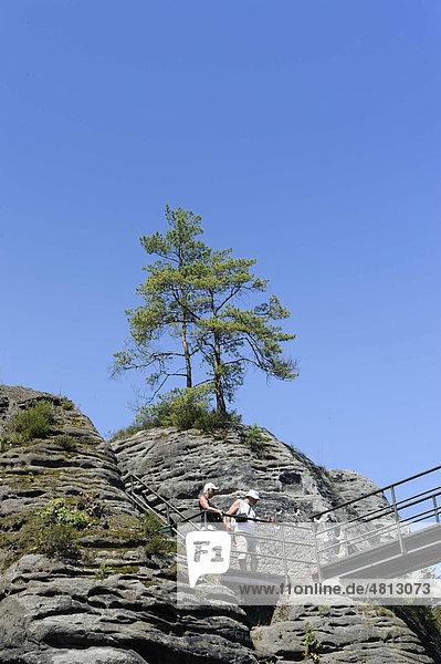 Bastei  Elbsandsteingebirge  Sächsische Schweiz  Sachsen  Deutschland  Europa