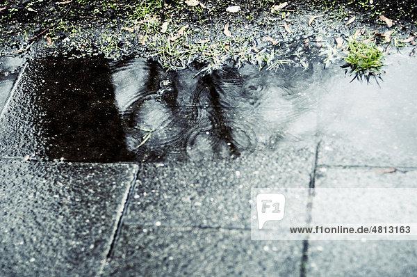 Regentropfen bilden Kreise in Pfütze  Spiegelung