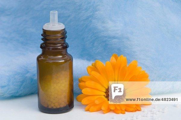 Ringelblume und Medizinflasche auf weißem Hintergrund