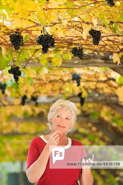 Italien  Südtirol  Reife Frau im Weinberg