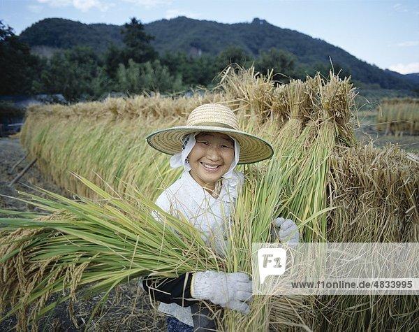 Asien  Landwirtschaft  Ernte  Urlaub  Honshu  Japan  Landmark  Reis  Tourismus  Reisen  Urlaub  weiblich  Präfektur Yamanashi Asien, Landwirtschaft, Ernte, Urlaub, Honshu, Japan, Landmark, Reis, Tourismus, Reisen, Urlaub, weiblich, Präfektur Yamanashi,