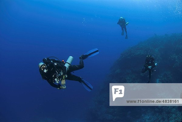 Technical Divers using Trimix  Rebreathers and technical diving equipment  Divetech  Grand Cayman  Cayman Islands  Caribbean