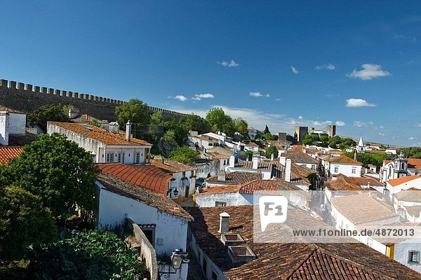 view over the roofs of bidos
