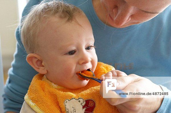 Möhre  zerdrücken  Mutter - Mensch  Baby