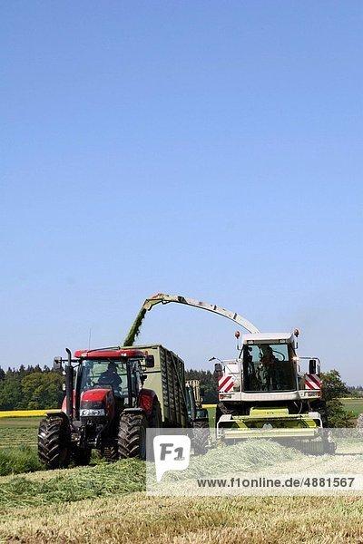 Produktion  Feld  Gras  Landwirtin  Silagebehälter