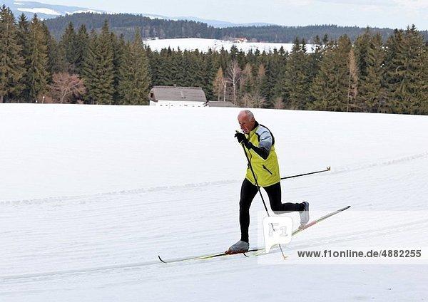 Senior  Senioren  Winter  Skisport  Schnee