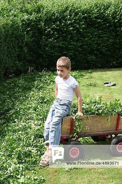 Sackkarre  arbeiten  Junge - Person  Garten