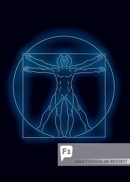 Neonlicht  Vinci