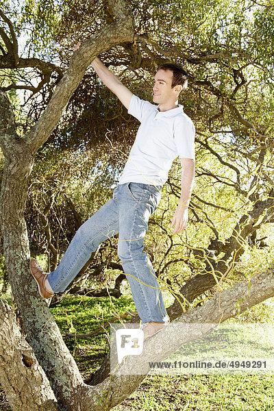 Einen Baum in einem Park klettern mann