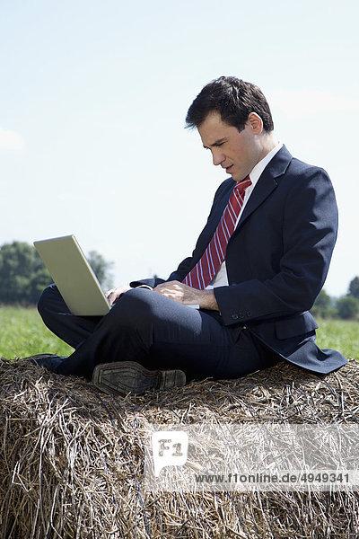 Kaufmann sitzen auf ein Heuballen und arbeiten auf einem laptop