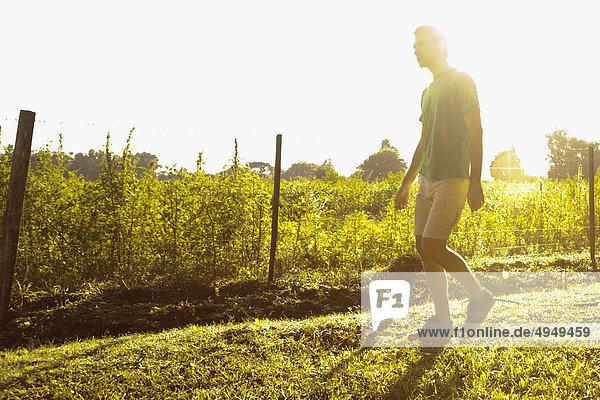 Mann zu Fuß in der Nähe von einem Feld in der Dämmerung