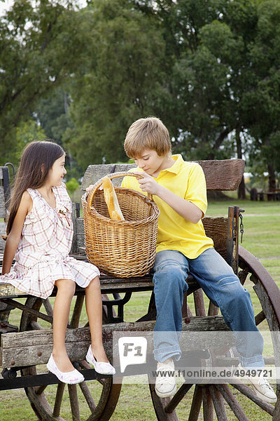 sitzend Bruder Picknick Korb Transport Mädchen