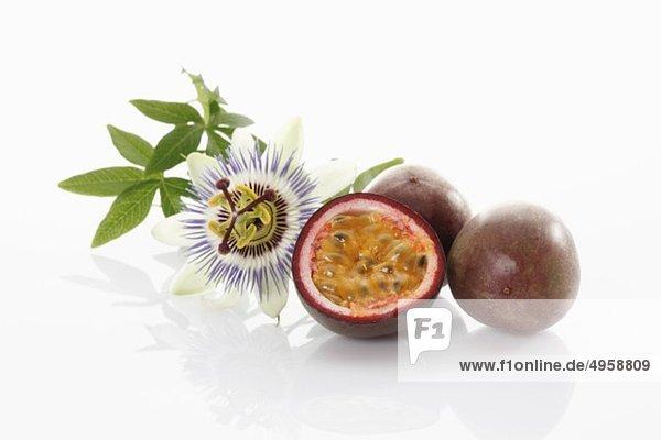Passionsfrucht mit Blüte auf weißem Grund