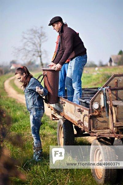 Kroatien  Baranja  Männer und Frauen  die im Weinberg arbeiten