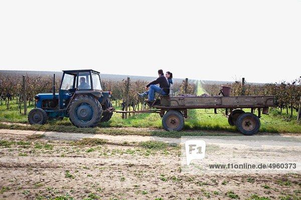 Kroatien  Baranja  Männer und Frauen auf Traktorfahrt
