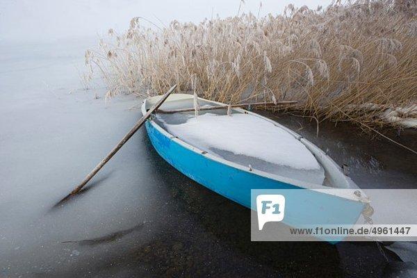 Österreich  Salzkammergut  Ruderboot auf gefrorenem Irrsee