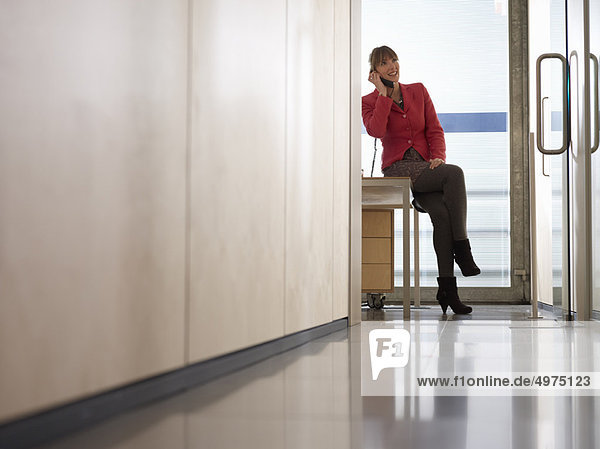 Frau  Büro  Business  telefonieren