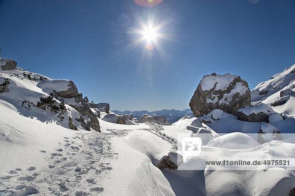 Wanderweg durch die Winterlandschaft