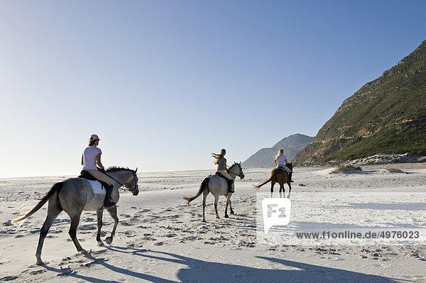 3 Personen auf Pferden am Strand