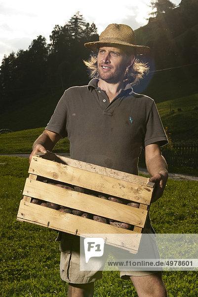 Mann trägt eine Holzkiste mit Kartoffeln