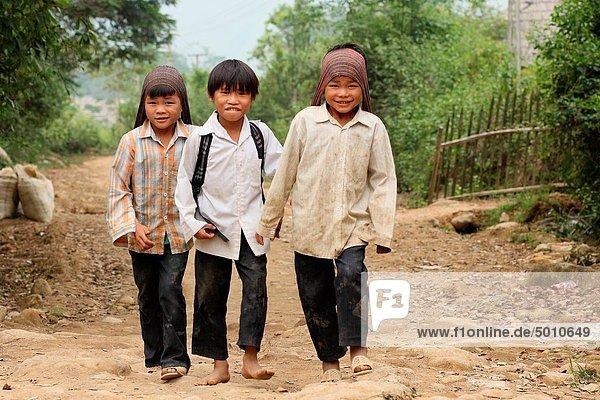 Three boys after school  Sapa village  Sapa region  North Vietnam.
