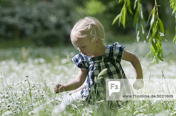 Blondes Mädchen auf einer Blumenwiese