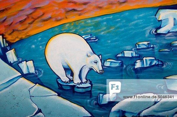 Eisbär  Ursus maritimus  Wärme  Erde  Horizont  Bedrohung  Eis  schmelzen  Eisscholle  Christchurch  Graffiti  Street-Art  Straßenkunst