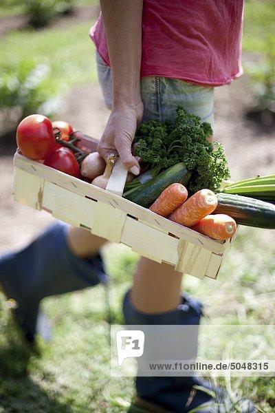 Junge Frau mit Gemüse im Korb Junge Frau mit Gemüse im Korb