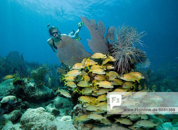 Schnorchlerin am Korallenriff