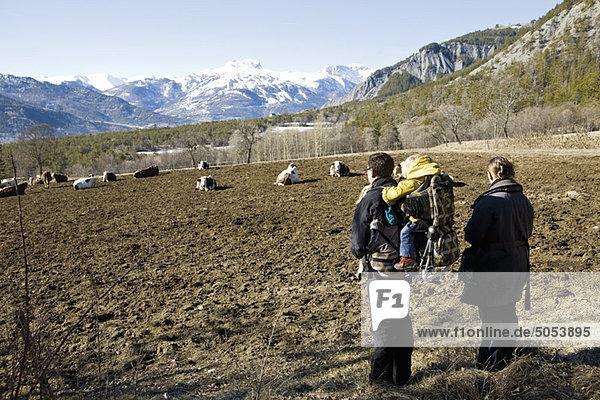 Gemeinsame Familienwanderung mit Blick auf die Kühe auf der Alm
