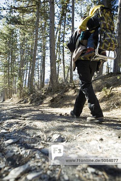 Wanderer beim Waldspaziergang mit Baby im Rucksackträger  Tiefblick