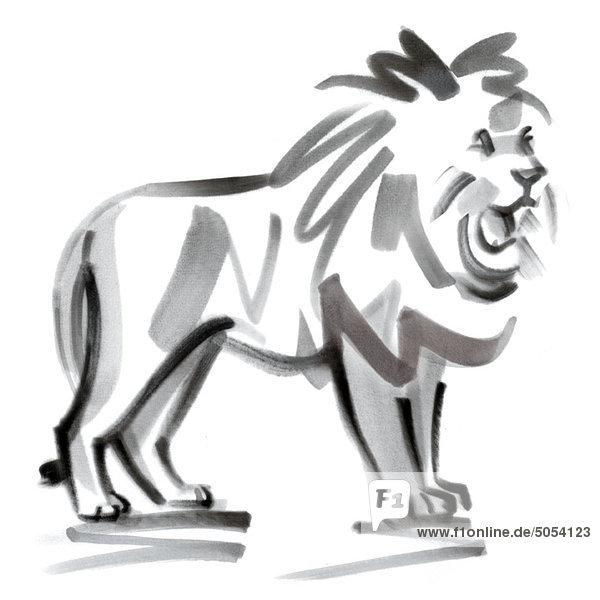 Löwe Sternzeichen  Illustration