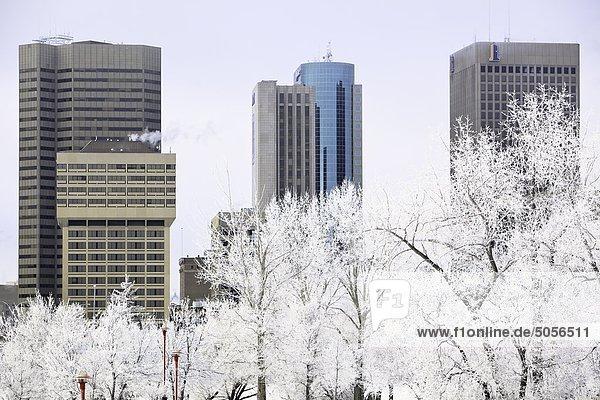 Downtown Winnipeg skyline on a frosty winter day. Winnipeg,  Manitoba,  Canada.