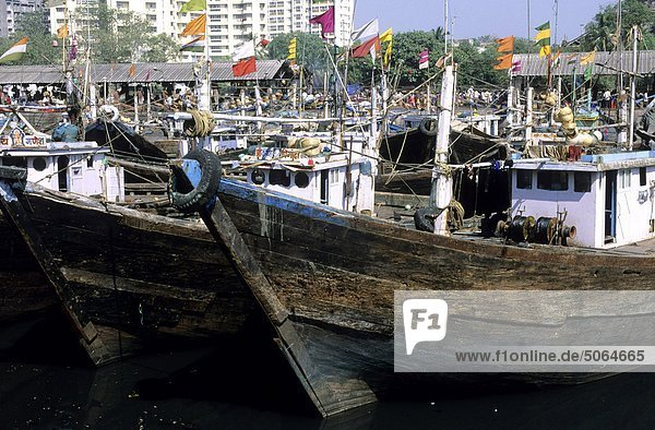 India  Mumbay  fishing harbour