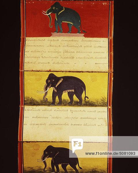 Die Seiten des Manuskripts auf Elefanten. Nationalbibliothek  Bangkok  Thailand. Die Seiten des Manuskripts auf Elefanten. Nationalbibliothek, Bangkok, Thailand.